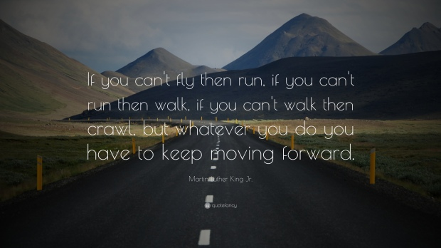 837-Martin-Luther-King-Jr-Quote-If-you-can-t-fly-then-run-if-you-can-t.jpg